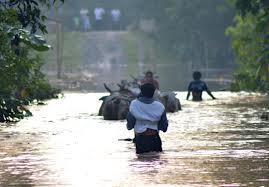 Analisis Penanggulangan Bencana Analisis Penanggulangan Bencana