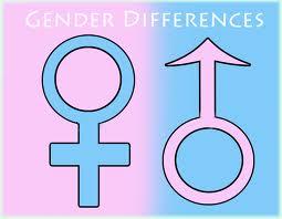 Kesetaraan Gender  Kesetaraan Gender