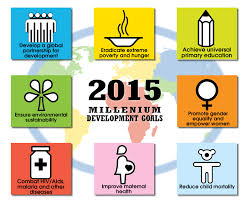 Millenium Development Goals (MDG )