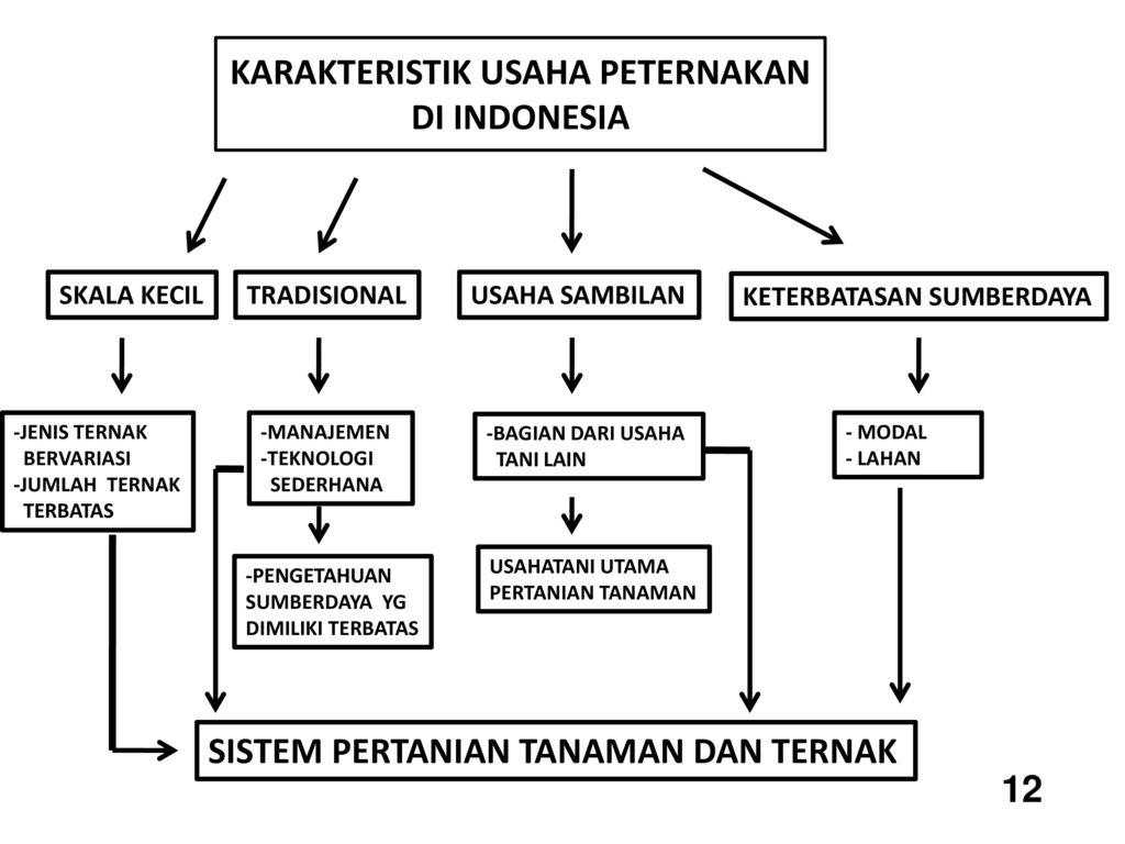 Pembahasan Lengkap Teori Karakteristik Usaha Peternakan Menurut Para Ahli Dan Contoh Tesis Karakteristik Usaha Peternakan